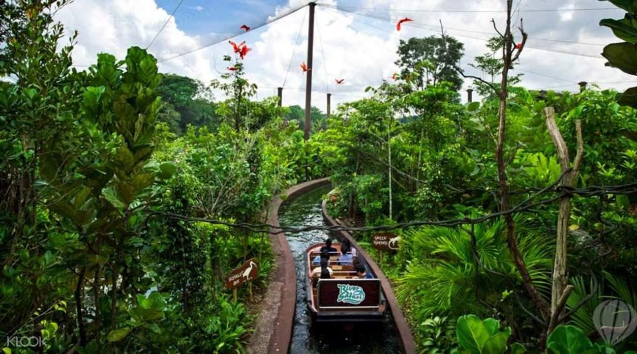 热带可爱图片